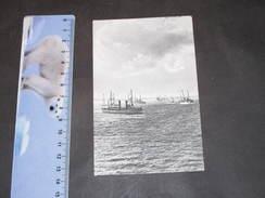 Navires En Mer. Posté à Anvers En 1904 - - Bateaux