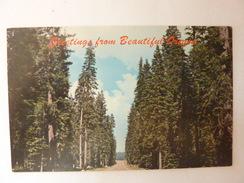 Greetings From Beautiful Oregon - Etats-Unis