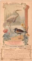 Carte Publicitaire De La Chocolaterie D' AIGUEBELLE - Le Monde Des Oiseaux - Aigrette Blanche, Pluvier Doré , Echassier - Birds