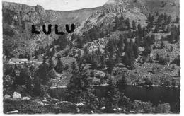 DEPT 68 : 2 Scans : La Vallée De Munster , Le Lac De Forlet - Munster