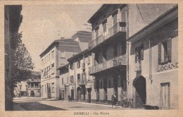 8257-CANELLI(ASTI)-VIA ROMA-FP - Asti