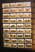 36 Timbres Différents Oblitérés  Carnet  Vaches Chevaux Et Chèvres Animaux     France 2014/ 2016 - Gebruikt