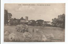 CPA  HAUTE SAÔNE     AMANCE  Vue Et Gros Plan De Fenaison - France