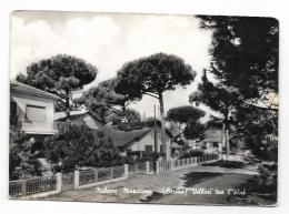 MILANO MARITTIMA VILLINI TRA I PINI VIAGGIATA FG - Ravenna