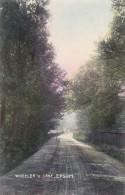 AO53 Wheeler's Lane, Epsom - C1907 Surrey Postcard - Surrey