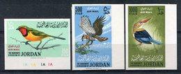 1964 -JORDAN-BIRDS- 3 RARE VAL IMPERF..M.N.H. -LUXE ! - Jordanien