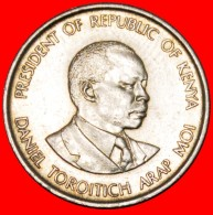 § COCK: KENYA ★ 50 CENTS 1980! LOW START ★ NO RESERVE! - Kenya