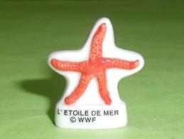 Fèves / Animaux / Poissons / Coquillages : Poisson, Coquillage, L'étoile De Mer, WWF   TB111 - Animaux