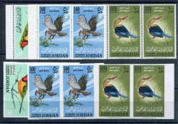 1964 -JORDAN- RARE BIRDS- 12 VAL.PERF.+ IMPERF.M.N.H. -LUXE ! - Jordanien