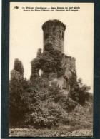 CPA - PIEGUT - Restes Du Vieux Château Des Vicomtes De Limoges - France