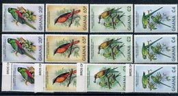 1981-GHANA- BIRDS-12 VAL.- M.N.H. LUXE !! - Ghana (1957-...)