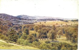 A R QUINTON - SALMON 1527 - LEITH HILL AND DORKING FROM BOX HILL - Quinton, AR