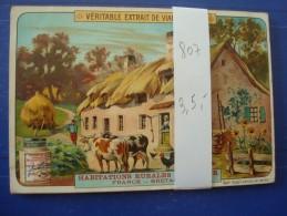 CHROMES LIEBIG Nr 807  Habitations Rurales En Europe - Liebig