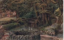 A R QUINTON - SALMON 1662 - THE WISHING WELL, UPWEY NR WEYMOUTH - Quinton, AR