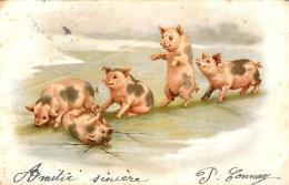 [DC3338] CPA - MAIALI SUINI PORTAFORTUNA - Viaggiata - Old Postcard - Cartoline
