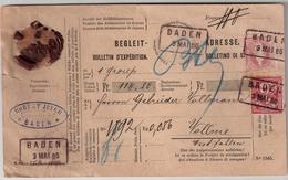 """1886, Paketkarte """" Baden """"  , #6154 - Briefe U. Dokumente"""