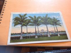 Palm Beach Floride Looking - Palm Beach
