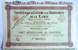 ACTION SOCIETE POUR LA CULTURE ET LE TRAITEMENT DE LA RAMIE  - 1929 TITRE 005712 - Actions & Titres