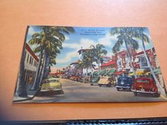 Palm Beach Avenue Voiture Ancienne - Palm Beach