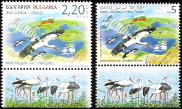 ISRAEL & BULGARIA Joint Issue 2016 - Migrating Birds - Storks - Both Stamps With Tabs - MNH - Storks & Long-legged Wading Birds