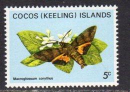 Cocos (Keeling) Islands 1982 Butterflies Definitives 5c Value, MNH (B) - Cocos (Keeling) Islands