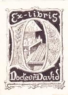 EX - LIBRIS Du DOCTEUR DAVID Par Henry André En 1916 @  La Lèpre En Anjou , Peste à Angers , Marchand D'orviétan - Bookplates