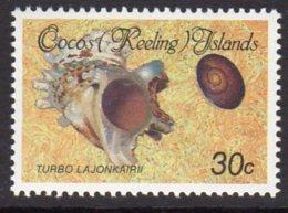 Cocos (Keeling) Islands 1985 Shells & Molluscs Definitives 30c Value, MNH (B) - Cocos (Keeling) Islands