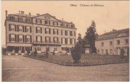 27969g  CHATEAU DE BETHUNE - KASTEEL - Ohey - Ohey