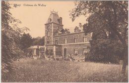 27970g  CHATEAU DE WALLEY - KASTEEL - Ohey - Ohey