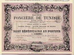 SOCIETE FONCIERE DE TUNISIE 1885 - Afrique