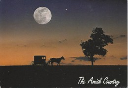 The Amish Country - Horse And Buggy Under A Full Moon