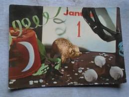 D140660  Hungary  New Year Card  PIG PIGLET   COCHON  Chocons - Cochons