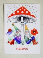 Post Card From Lithuania Mushroom Champignon 1976 Year - Hongos