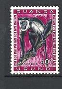 RUANDA URUNDI - 1959 Fauna Colobus Sp. MONKEYMNH - Ruanda