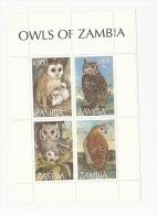ZAMBIA 1997 Sgms973 Owls - Birds Sheet MNH - Hiboux & Chouettes
