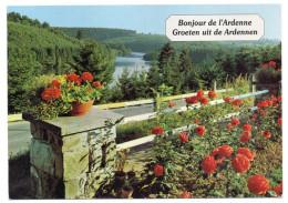 Belgique--PALISEUL--Maissin--1999--Bonjour De L´Ardenne (fleurs),cpm éd Thill SA