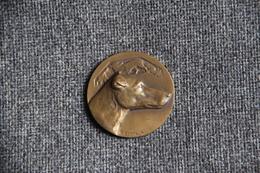 Belle Médaille Représentant Un Chien De Chasse , Type Lévrier, Signée Par Le Graveur  G.CONTAUX .TOULOUSE. - Professionnels / De Société