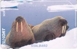 N 234 Walrus  , Used . 11500x