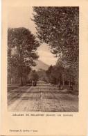 Torino - Bollengo - Strada Per Santhià ( Binari Tramvia Ivrea Santhià) - Fp Nv - Italia