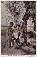 Youthful Butcher Goz-Abu-Goma - Soudan