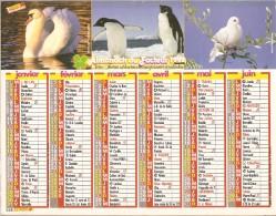 ALMANACH  DU  FACTEUR  1992   Meurthe Et Moselle.   CYGNE  /  PINGOUINS / TIGRE  /  OURS /  ECUREUIL .... - Calendriers