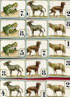 JEU DES 8 FAMILLES ANCIEN INCOMPLET COQ GEAI VACHE CHAT GRENOUILLE ANE MOUTO CHIEN - Cartes à Jouer