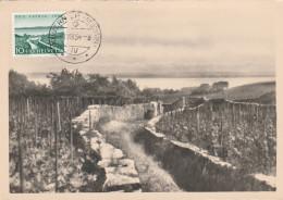 CARTE MAXIMUM  - SUISSE  N° 549  AUVERNIER    LAC DE NEUCHATEL - Cartoline Maximum