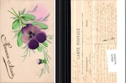 527660,tolle Handgemachte Handgemalte AK Veilchen Blume - Ansichtskarten