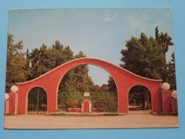 OUJDA L'Entrée Du Parc De S.A.R. Princesse LALLA AICHA ( 06-004 ) Anno 19?? ( Zie Foto Voor Details ) !! - Maroc