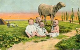 BEBE(MOUTON) - Bébés
