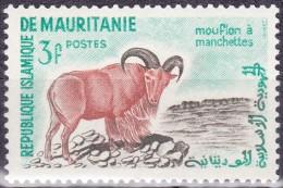 Timbre-poste Neuf** - Animaux Divers Mouflon à Manchettes - N° 143 (Yvert) - République Islamique De Mauritanie 1960-61 - Mauretanien (1960-...)