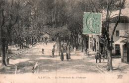 ALGERIE TLEMCEN LA PROMENADE DU MECHOUAR CIRCULEE 1921 - Tlemcen