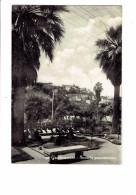 Grottammare - Scorcio Panoramico - 1959 - Angeli Terni - Ascoli Piceno