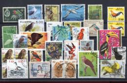 Birds Small Lot !!!!!!!!!!!!!!! - Colecciones & Series